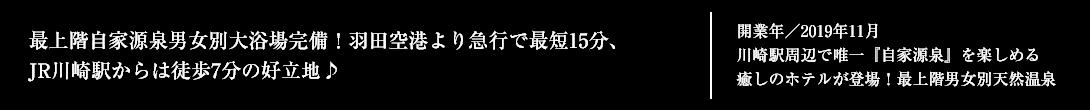 2019年11月1日新規オープン予定!最上階自家源泉男女別大浴場完備!羽田空港より急行で最短15分、JR川崎駅からは徒歩7分の好立地♪
